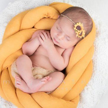 خواباندن نوزاد قبل از عکاسی